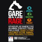 le Ministère de l'Agriculture, de l'Agroalimentaire et de la Forêt lance une campagne de sensibilisation pour la rage
