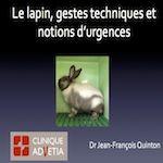 la lapin, gestes techniques et notions d'urgences