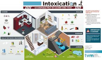 intoxication animaux chien chat maison tvm