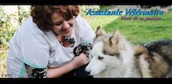 ASV auxiliaire vétérinaire