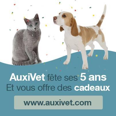 anniversaire auxivet, des cadeaux à gagner pour les auxiliaires vétérinaires