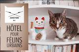 aristide hotel pour chat